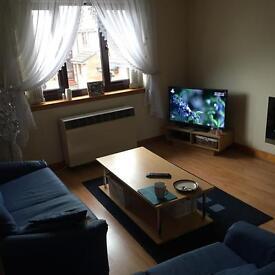 2 double bedroom flat in Dumfries for rent