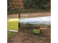 Omlet go chicken coop, hens, 2m run and accessories.