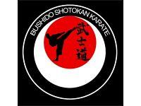 Karate Class for Beginners.