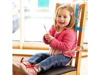 Gro Anywhere Chair Harness Jazz Stripe