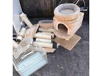 Cat basket, beds and scratch posts.