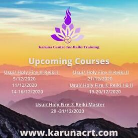 Usui/Holy Fire Reiki 1 course