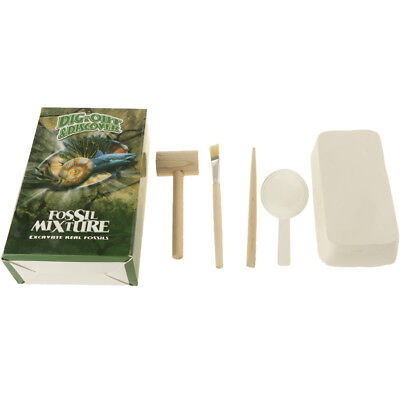 Exploring Fossils Rock Geology Earth Science Toy Geologist Pretend Play Game