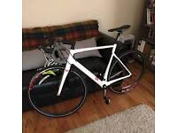 13 Carbon Fibre Road Bike