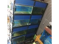 John Allen shop unit. 8x2ft tanks frame pump filters etc can be seen in use