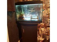 Fish tank - 68 litres