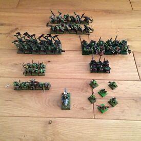 Warhammer Fantasy Orcs & Goblins