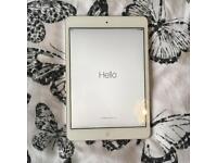 Apple iPad mini 1 - 16GB storage