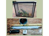 Complete reptile vivarium/tank set up with accessories