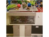 4ft fish tank & accsessories