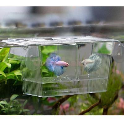 Aquarium Fish Tank Double-barrelled Breeding Breeder Seperation Box Hatchery Incubator