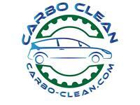 Engine Carbon Clean Service