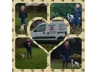 WALKIZ Dog walker & Daycare