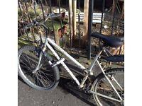 Apollo Juice Mountain Bike!