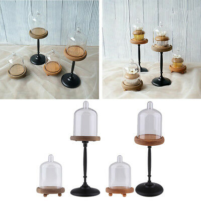 Footed Round Wood Server Cake Stand with Glass Dome ()