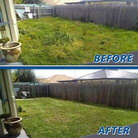 Local gardeners- Garden maintenance - Hedge cutting -Grass cutting -Garden tidy up London