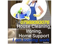 I am looking cleaning house work anytime I am available