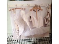 Ballet shoe canvas