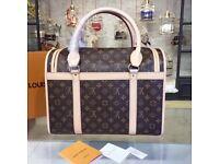Louis Vuitton LV Dog Pet Carrier Bag Case