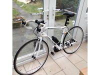Ecosmo Road Racer Bike