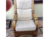 Two Conservatory Arm Chairs
