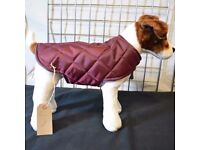 Hand Made dog coats , From £10 , over 100 coats in stock