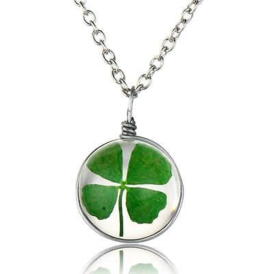 Green Real Dried Four Leaf Clover Round Pendant Good Lucky Necklace -