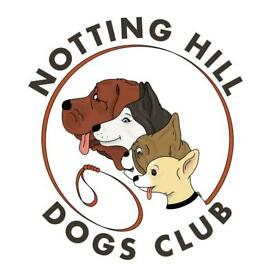 Dog Walker/Daycare in West and Southwest London