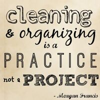 Cleaning/organizing & help for hoarders
