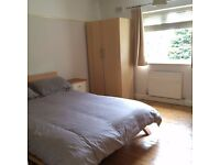 Friendly flatmate needed in a lovely spacious flat