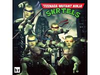 5 a side footy players needed for Teenage Mutant Ninja Skrtels , sundays at the parks north shields