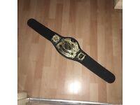 WWE kids belt