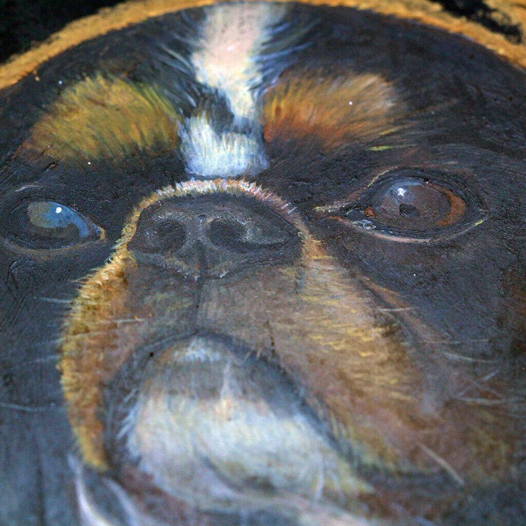 Antique victorien tole plateau peint Épagneul cavalier king charles chien (6904)