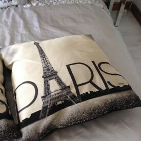 2 large Paris cushions