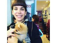 Happy, Experienced & Professional Dog Walker & Pet Sitter in West Hampstead & Surrounding Areas :)