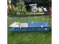 Large Pet, Guinean pig, hamster, gerbil, rabbit cage