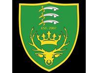Football Trials for FA Charter Standard Intermediate Club - Chingford & Waltham Abbey area
