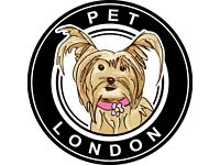 Fun Business Internship Pet Accessories London