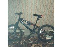 Moutain bike for 25