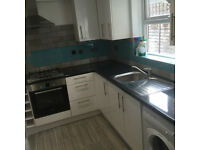 A lovely bright airy spacious 1 bed flat in Leyton