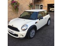 Mini - First in Pepper White