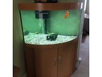 Corner fish tank. Including pump and light.