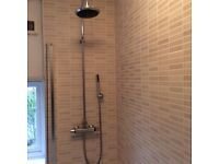 Twin exposed shower package