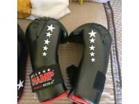 Kickboxing sparing kit