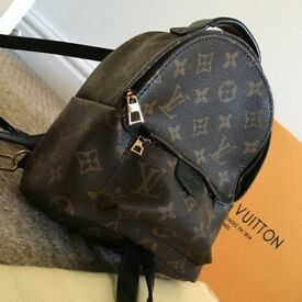 Louis Vuitton PALM SPRINGS BACKPACK MINI Monogram with box and dustbag