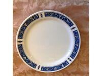 "Dinner Plates - Steelite International 10"""