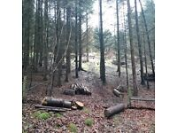 Own & Manage your own Woodland Experience Day, Saturday 14th October