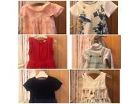 Next Dresses 12- 18