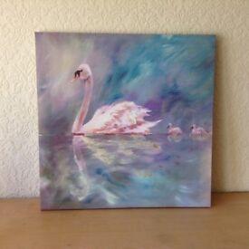 Swan & Cygnets Print on canvas frame