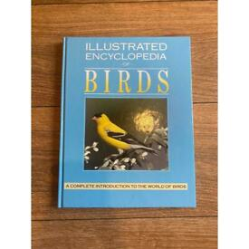 Illustrated enclylopedia of Birds